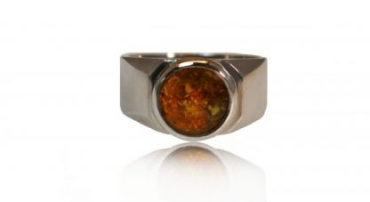modern ashes signet ring in silver